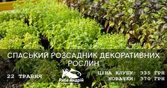 Посмотреть афишу: Розсадник декоративних рослин у Спаському