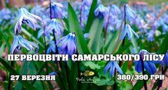 Посмотреть афишу: Первоцвіти Самарського лісу