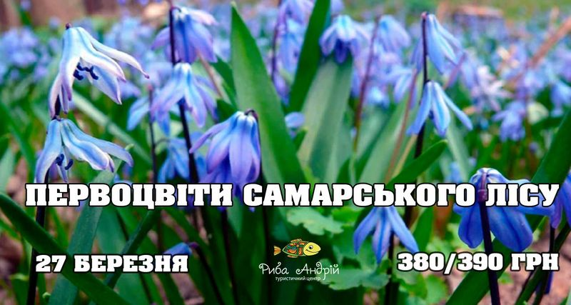Первоцвіти Самарського лісу
