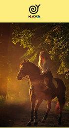 Посмотреть афишу: Конные прогулки с KAVA