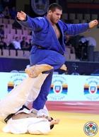 Посмотреть афишу: Международный мастер-класс по дзюдо