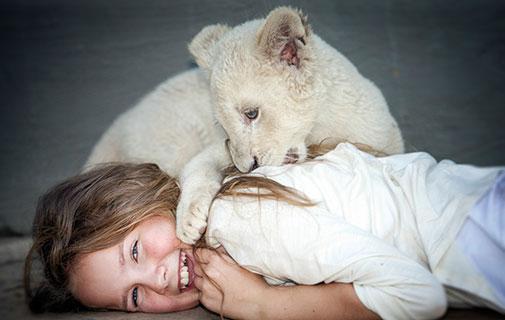 Приключение Мии и белого льва