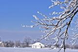 16 Января, морозный день