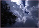 Небеса обетованные