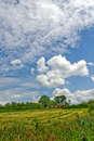 Сельские зарисовки ( прекрасное небо)
