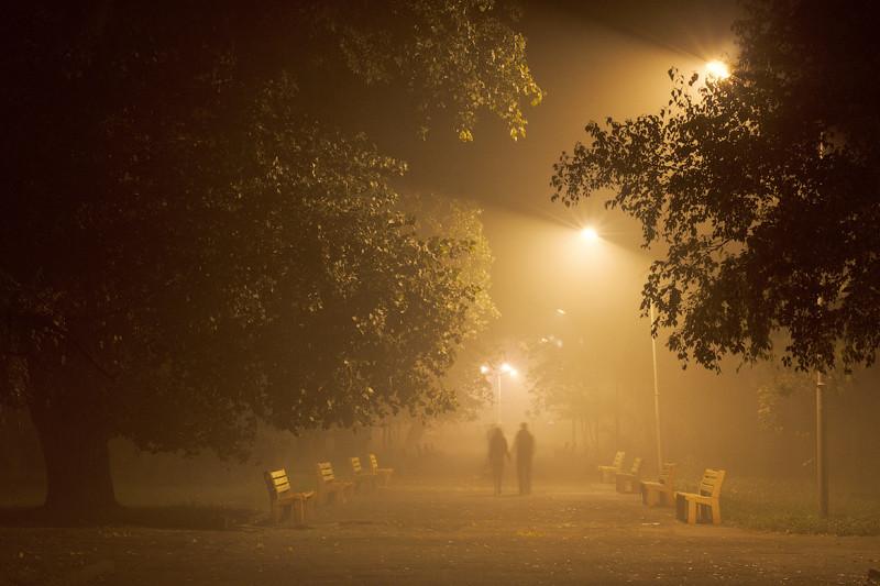 фото вечерний туман в городе женщины