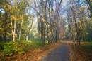 Севастопольский парк