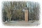 Л.И.Брежнев Днепродзержинск