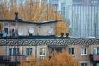 Осенние крыши