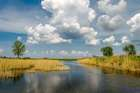 На реке Волчья...