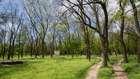 Тропинки в парке Богдана Хмельницкого