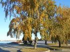 Осень на набережной .