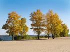 Пляжна осінь