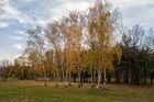 Осень на Победе
