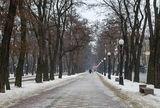 Бульвар на Яворницкого...