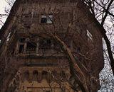 Найдено жилище Рапунцель в Днепре