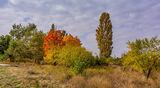 В окрестностях села Шульговка