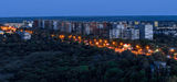 Ночной Тополь