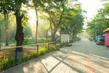 Субботнее утро в парке