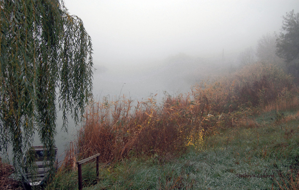 Утро...Река...Туман...Рассвет...