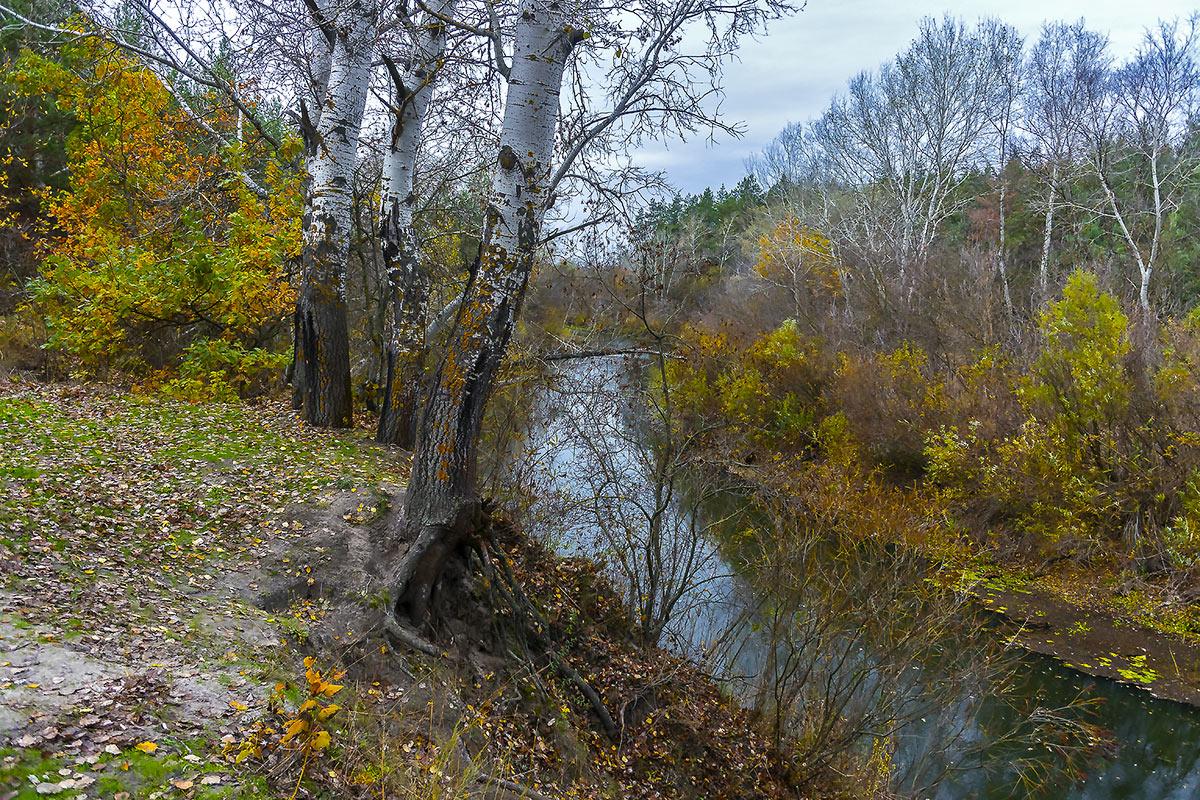 Река Орель с.Могилёв