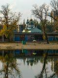 Новомосковск, лес