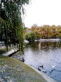 Днепр, парк Глобы