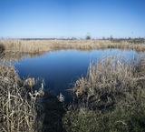 Озеро с.Могилёв