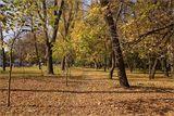 В парке Чкалова. Осень. :)