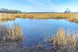 Рукотворное озеро с.Могилёв