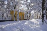 Мороз и солнце, день чудесный!!!
