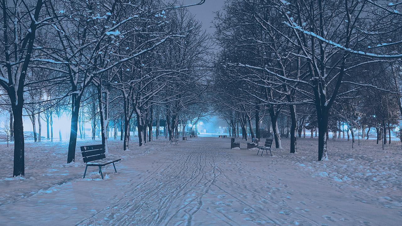 ночной бульвар Славы