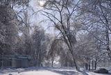 Зимы прекрасные мгновенья!