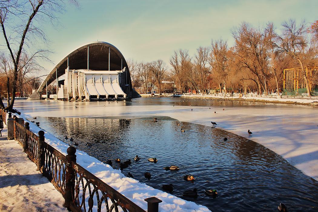 Утиное зимовье в парке Глобы