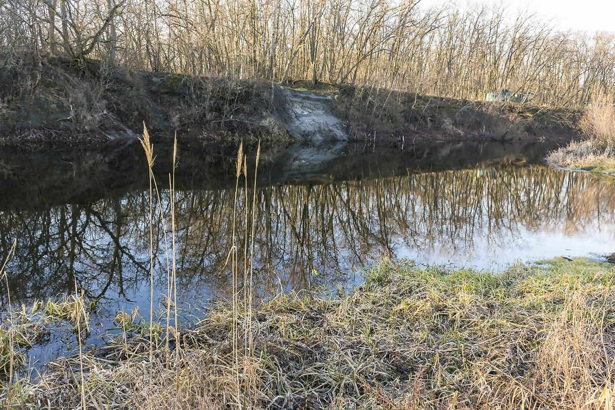Река Орель, с.Могилёв
