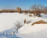 Мороз і сонце; день чудовий!