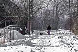 Улица Вишнёвая(Крупской), с.Могилёв