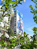 Весна на Солнечном :)