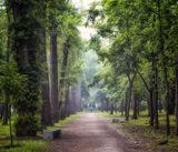 парк 40-летия освобождения Днепропетровска