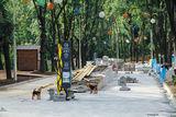 реконструкция парка Зелений Гай