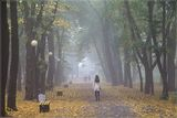 Осень в парке им. Т. Г. Шевченко :)