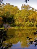 Осень в лесу, с.Могилёв