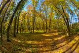 Осень в с.Хащевое