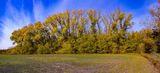 Осень в Могилёве