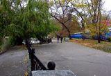 Осень в парке Глобы