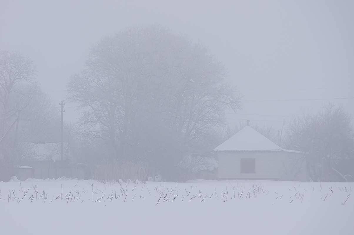 Туманное утро, 1 Января 2019 год, с.Могилёв