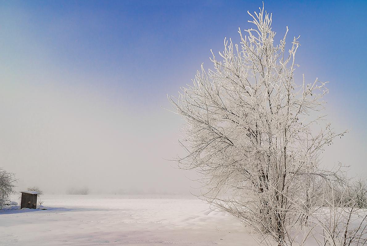 Зимний туман, с.Могилёв