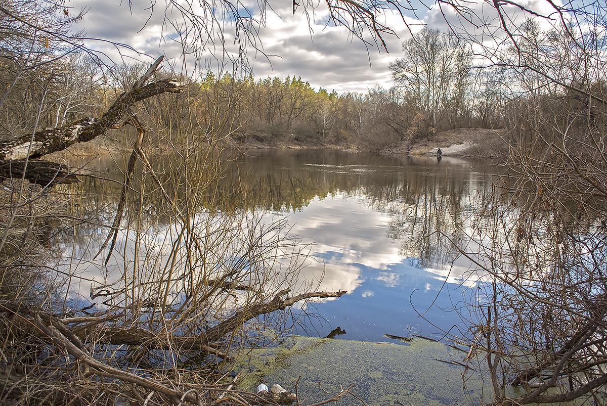 Орель и Орельский лес, Могилёв.