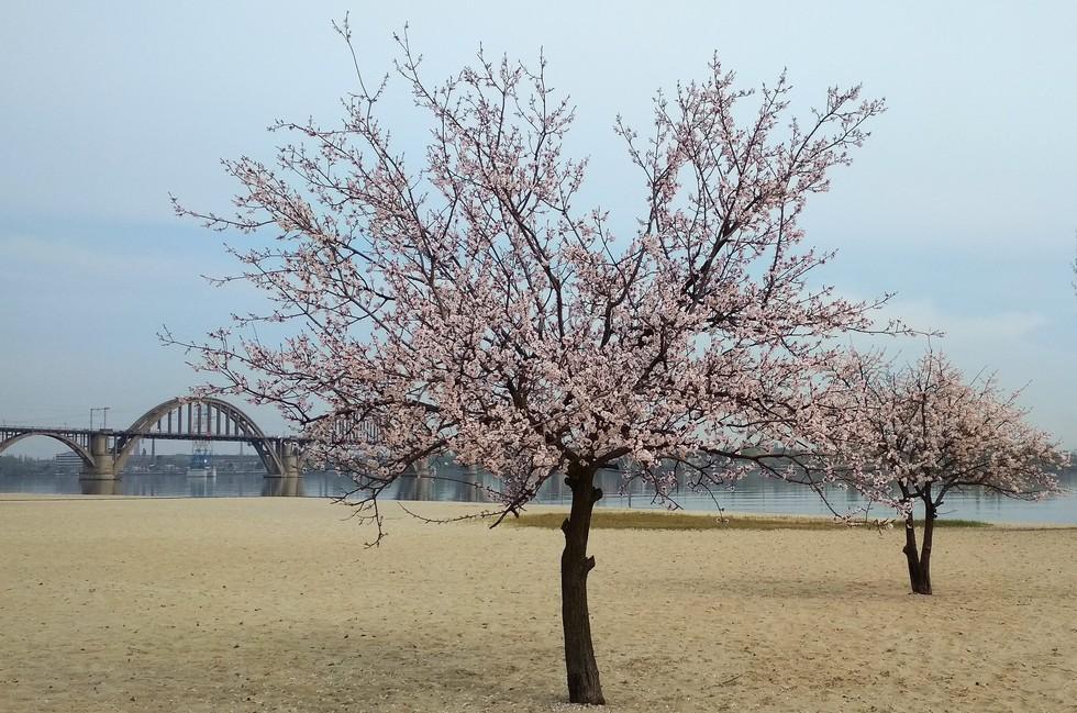 Весна на пляже
