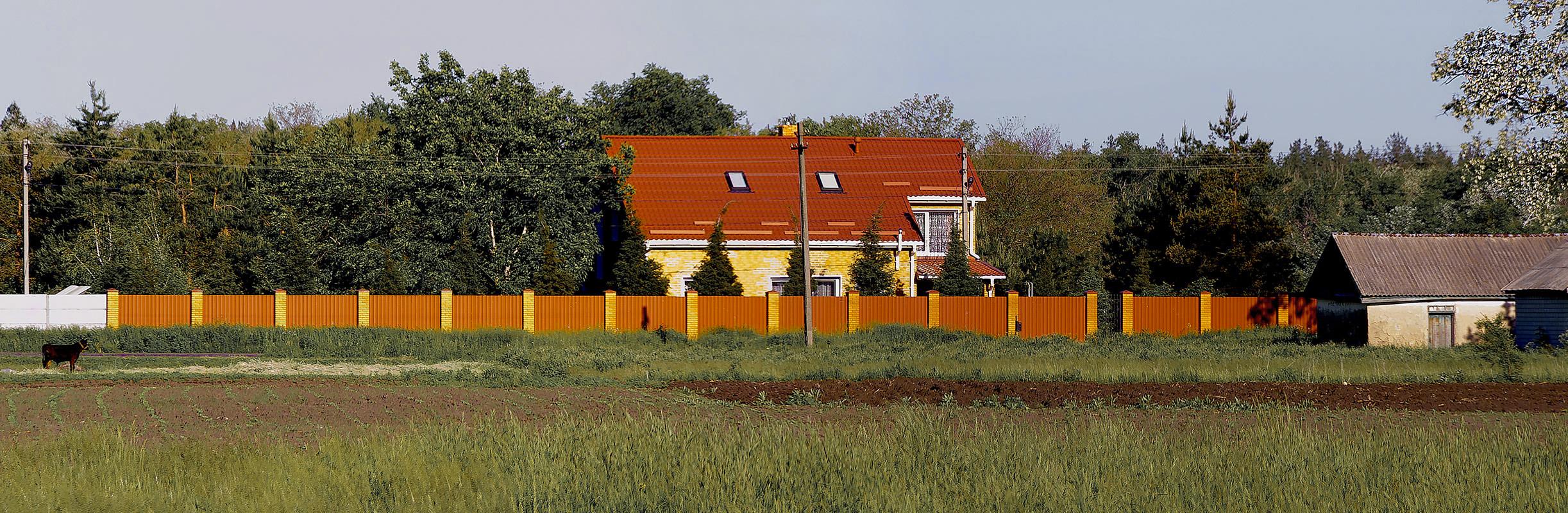Вид на улицу Паникахи, Могилёв